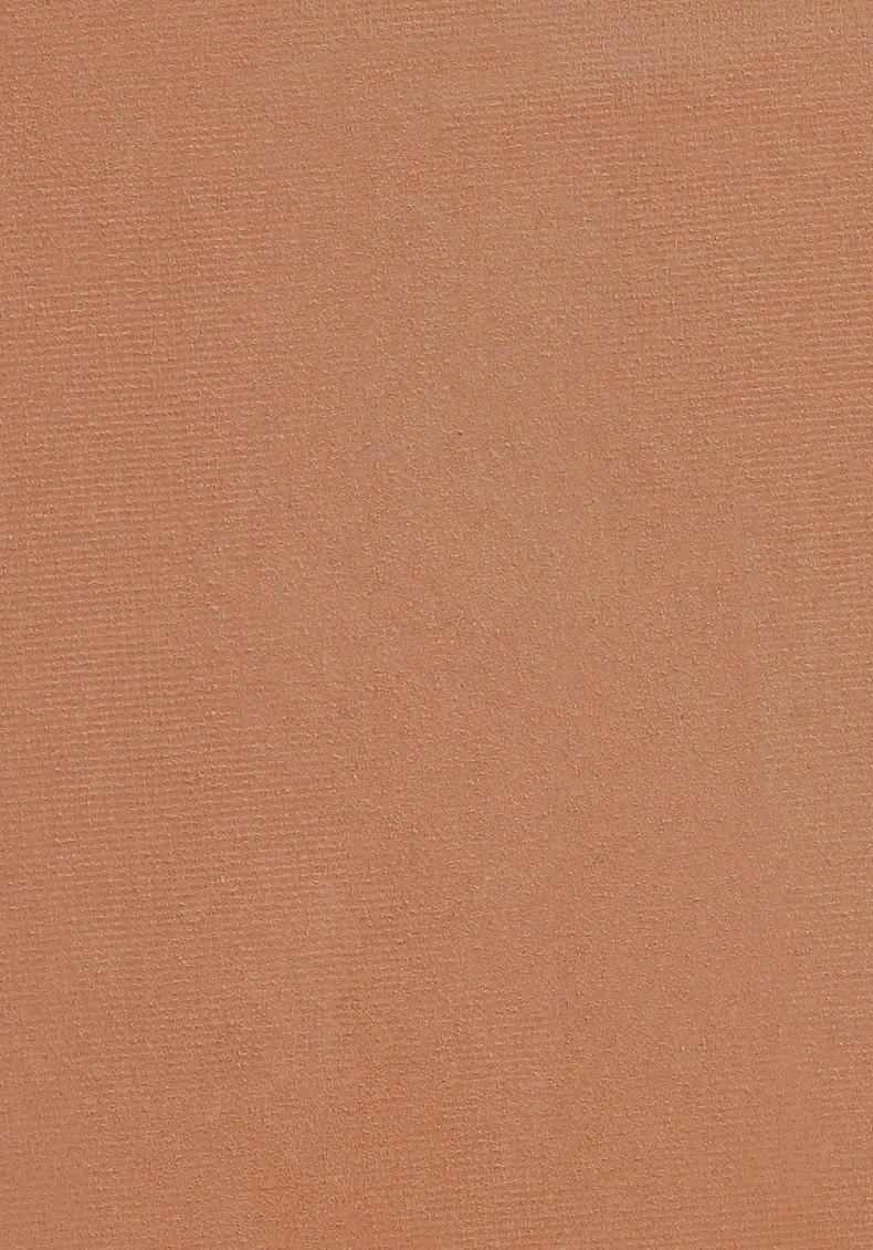 fond de teint poudre