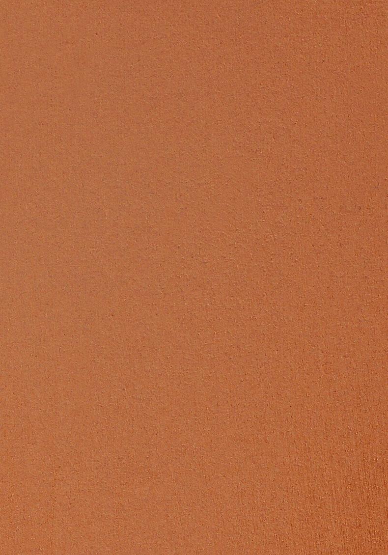 fond de teint poudre peau mate